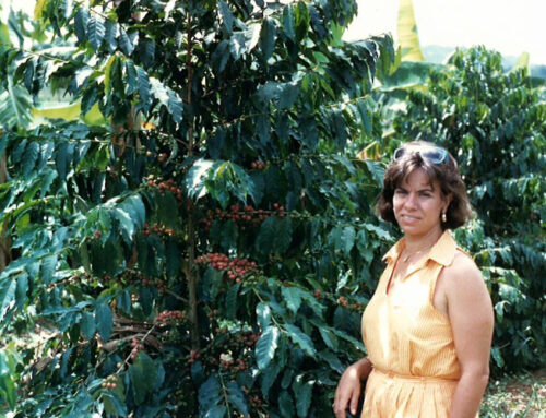 Honoring The Women in Coffee – Women's History Month