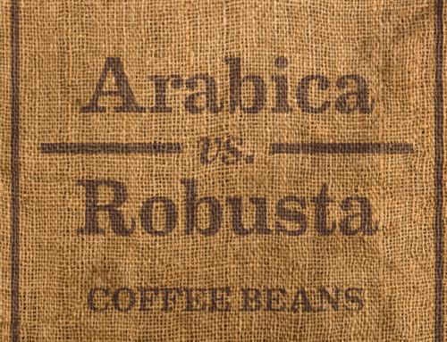 Coffee 101: Arabica and Robusta