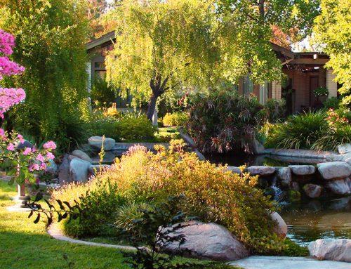 Mt. San Antonio Gardens